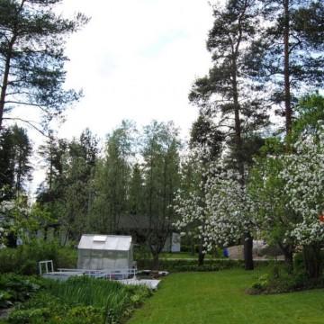 Kaunismäen puutarha