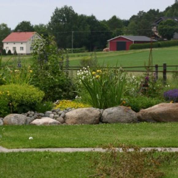 Minttus trädgård