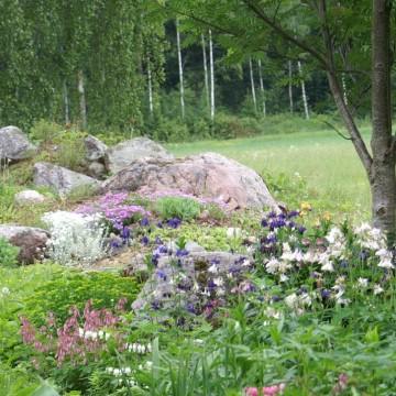 I biets trädgård