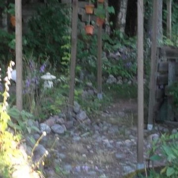 Saris och Aris trädgård