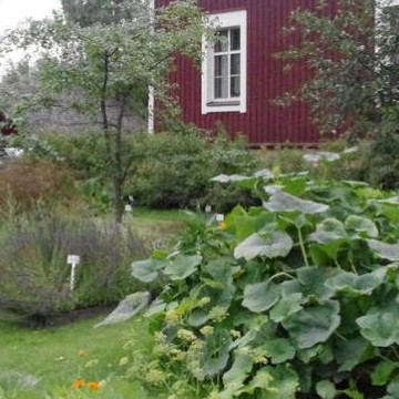 Kukkolas visningsträdgård
