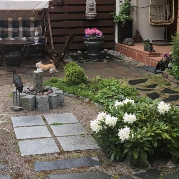 Seijan puutarha