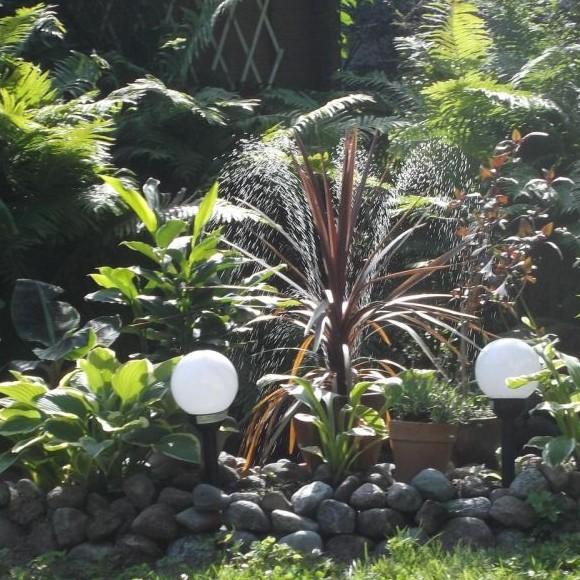 Sarin ja Arin puutarha