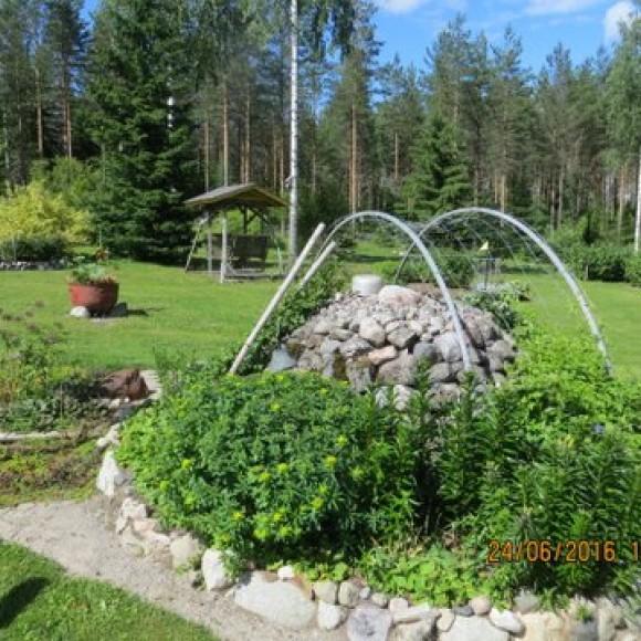 Metsälän puutarha