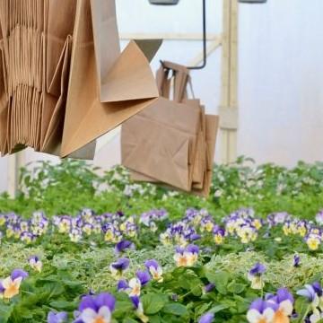 Kukkakauppa & Puutarha Järvinen