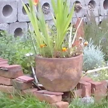 Kasviksia, kukkia, kalliota, katsottavaa