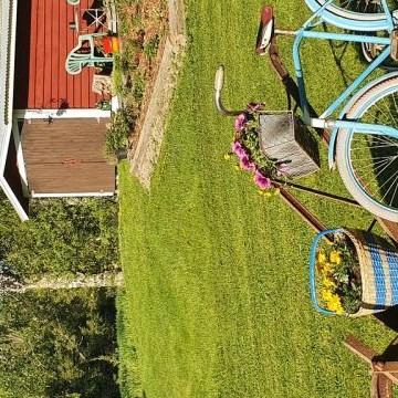 Pumppuhuoneen puutarha