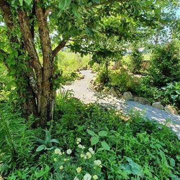 Sointula Garden