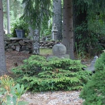 Sainios trädgård