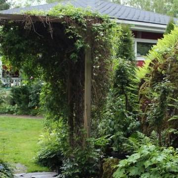 Marita och Lars-Oles hemträdgård