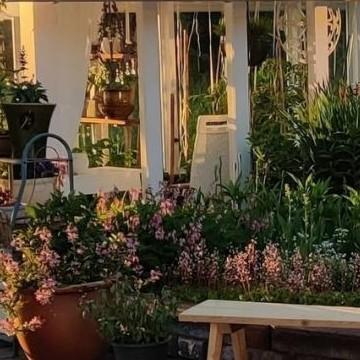 Taiteilijan puutarha Leena ja Juha Raussi