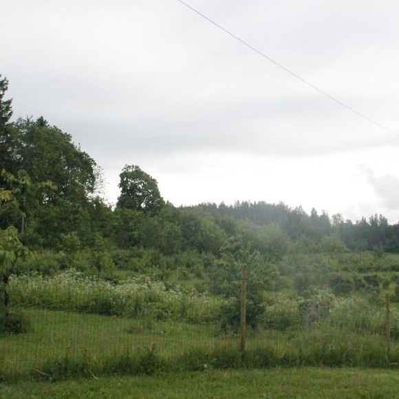 Yli-Klaavola