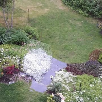 En liten, men mångsidig radhusträdgård