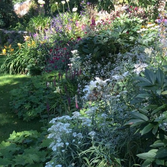 Annen ja Christophin puutarha