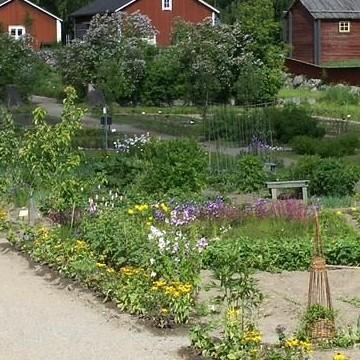 Aspegrenin puutarha