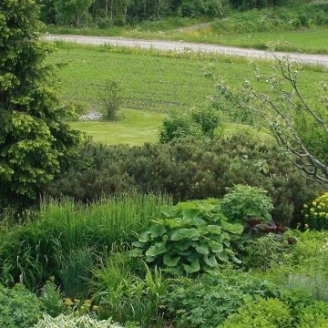 Savelan puutarha