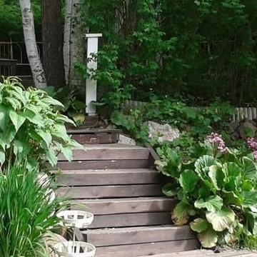 Lispetin puutarha