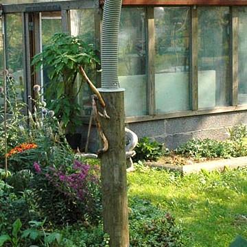Sinikan ja Anteron puutarha
