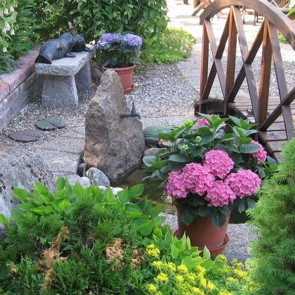 Pieni puutarha