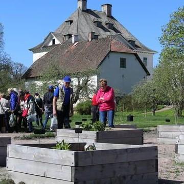 Louhisaaren puutarha ja puisto