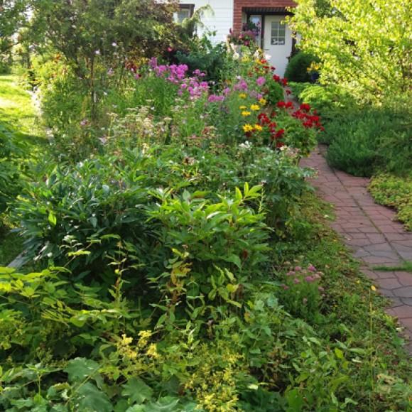 Hiekkaharjun puutarha