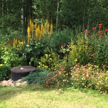 Lillin puutarha