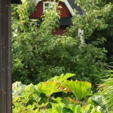 sixtens trädgård