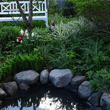 Solbackavägens trädgård