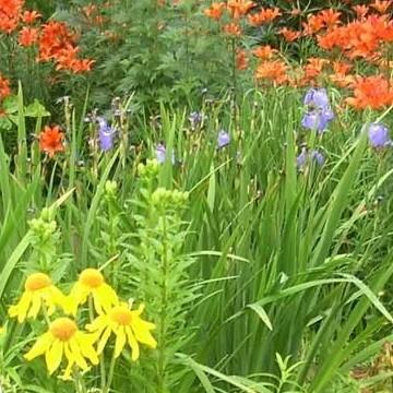 Lapin puutarhayhdistyksen avoimet puutarhat