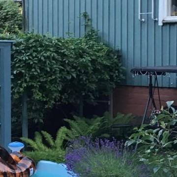 Kirjatoukan puutarha