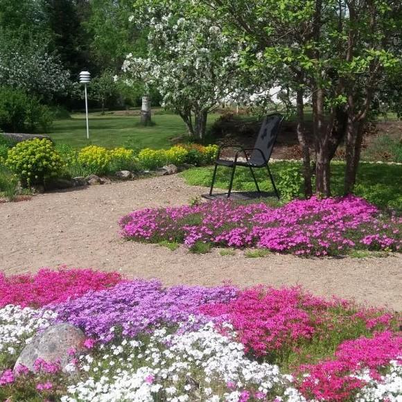 Mirjan puutarha