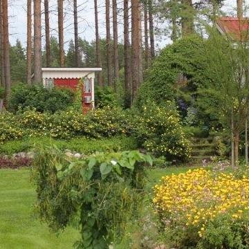 Onnelan puutarha