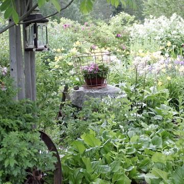 Lintukodon puutarha