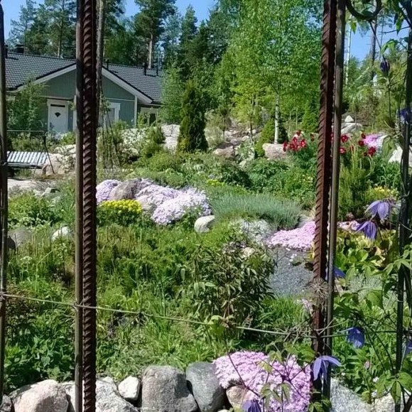 Carolas trädgård