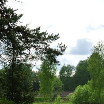 Mäntymäki