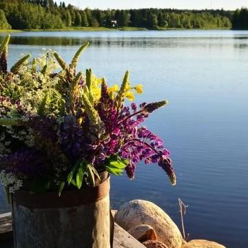 Maalaispuutarha Oulujoen maisemissa