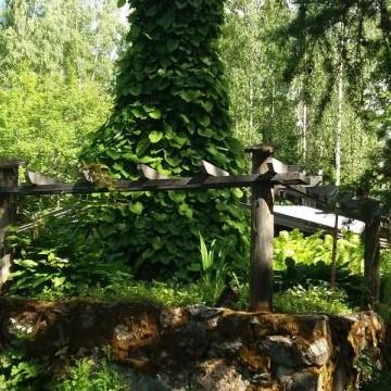Metsänvartijan Torpan Puutarha TIITTU