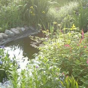 Paréns trädgård