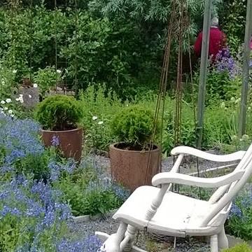 Magdalenan puutarha