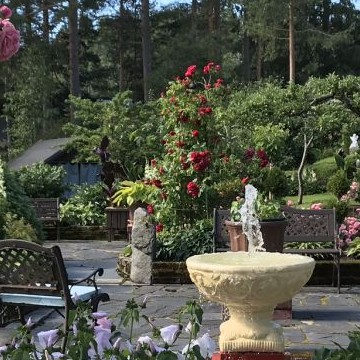 Terttu och Pekka Montonens trädgård