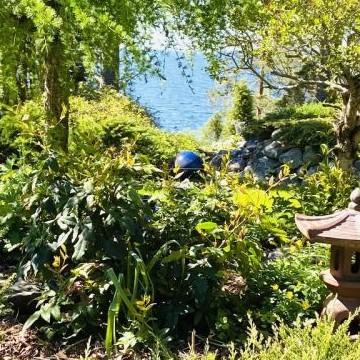 Hannelen ja Karin  puutarha