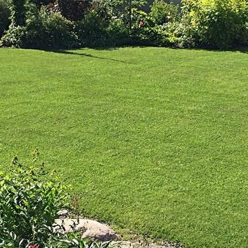 Sirpan ja Juhan puutarha