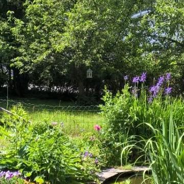Tuula Lempisen puutarha