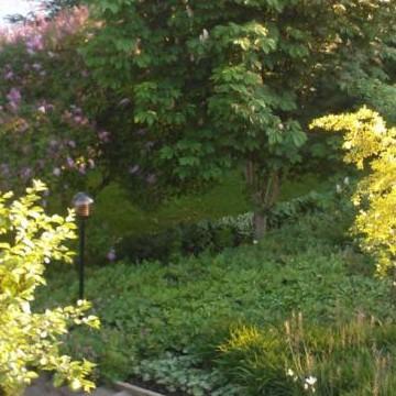 Sluttningsträdgården