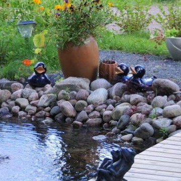 Anitas och Seppos trädgård