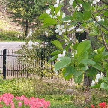 Puutarha Fågelvikissä