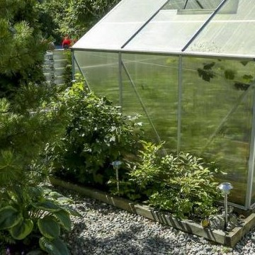 Annes trädgård