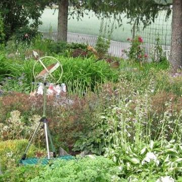 Krister och Ann-Sofis stenträdgård