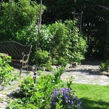 Karvakuonojen ja siilien kotipuutarha