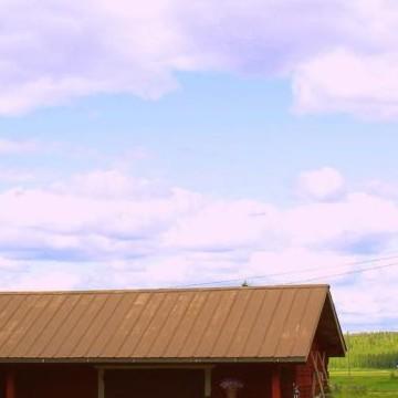 Ruokonens gård